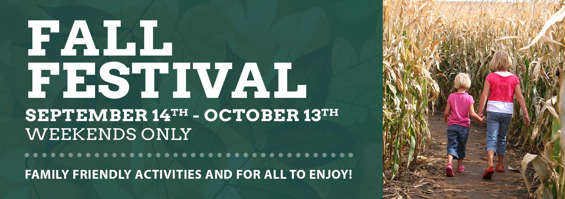 Fall-Festival_Banner