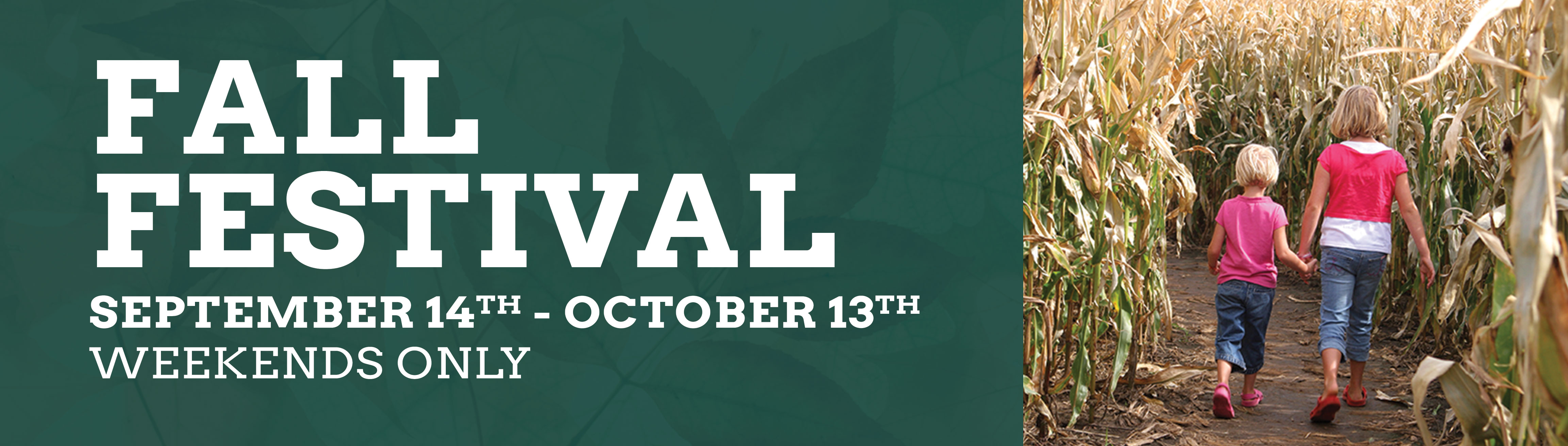 Fall-Festival_Page-Header